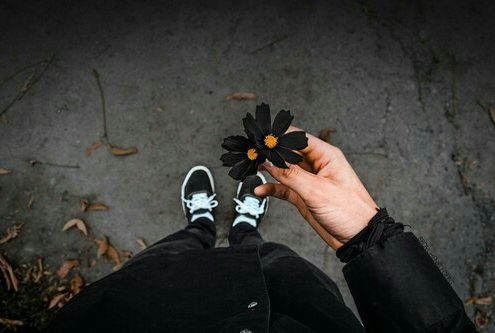 Woman holding black daisy after divorce